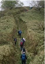 笹原の急登